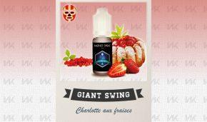 GIANT_SWING1